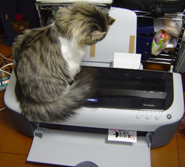 Alan_printer